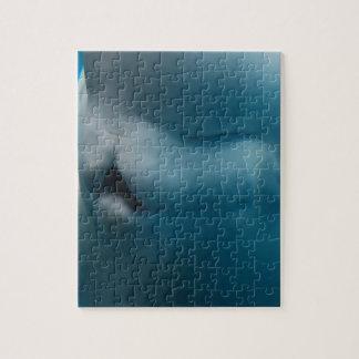 Ballena tonta de la beluga puzzle con fotos