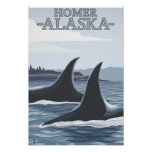 Ballenas #1 - home run, Alaska de la orca Póster