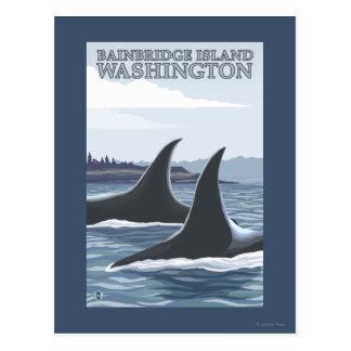 Ballenas #1 - isla de Bainbridge, Washington de la Tarjeta Postal