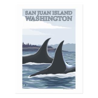 Ballenas #1 - isla de San Juan, Washington de la Tarjetas Postales