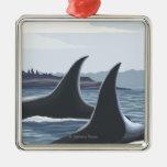 Ballenas #1 - López, Washington de la orca Adorno