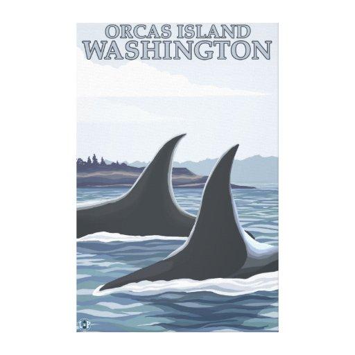 Ballenas #1 - orcas isla, Washington de la orca Lienzo Envuelto Para Galerias