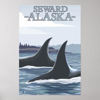Ballenas 1 - Seward Alaska de la orca Poster