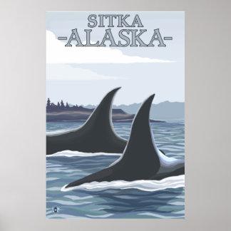 Ballenas 1 - Sitka Alaska de la orca Poster