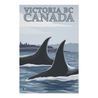 Ballenas 1 - Victoria A C Canadá de la orca Poster
