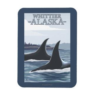 Ballenas #1 - Whittier, Alaska de la orca Imán Flexible