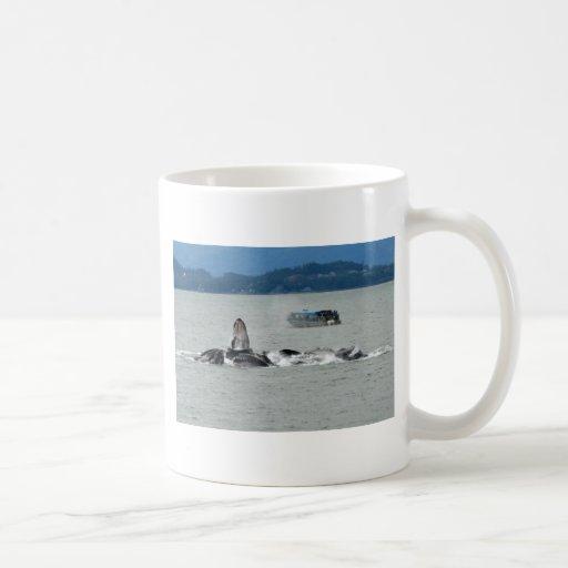Ballenas de Alaska Taza