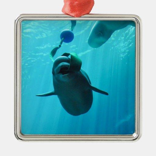 Ballenas de la beluga adorno navideño cuadrado de metal