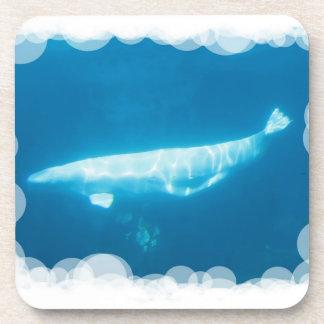 Ballenas de la beluga de la natación fijadas de pr posavaso