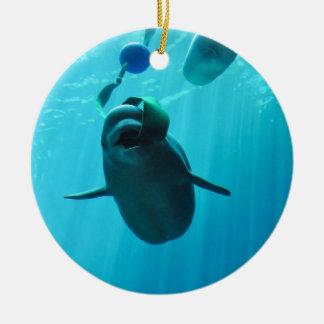 Ballenas de la beluga ornamentos de navidad