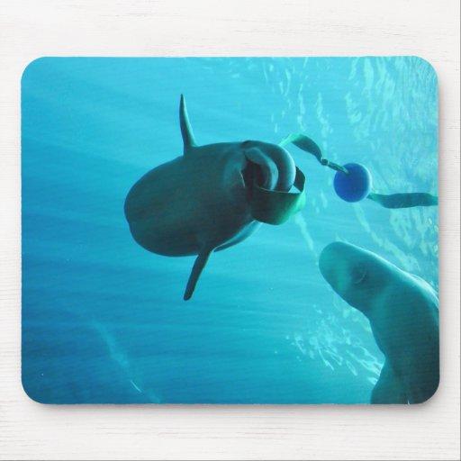Ballenas de la beluga tapetes de raton