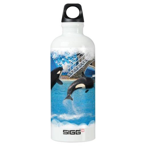 Ballenas de la orca