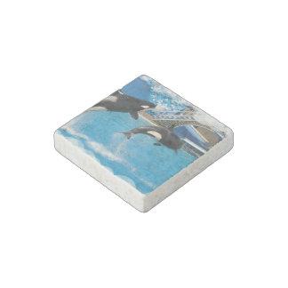 Ballenas de la orca imán de piedra