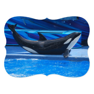 """Ballenas de la orca invitación 5"""" x 7"""""""