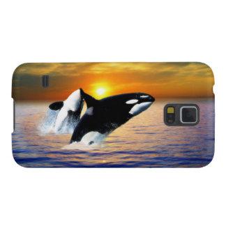 Ballenas en la puesta del sol carcasa para galaxy s5