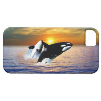Ballenas en la puesta del sol iPhone 5 Case-Mate cobertura