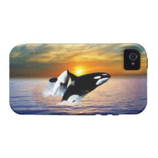 Ballenas en la puesta del sol Case-Mate iPhone 4 funda