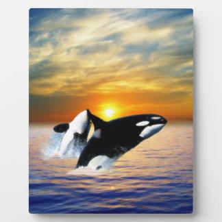 Ballenas en la puesta del sol placas de plastico