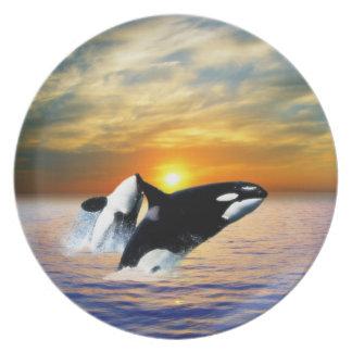 Ballenas en la puesta del sol plato para fiesta