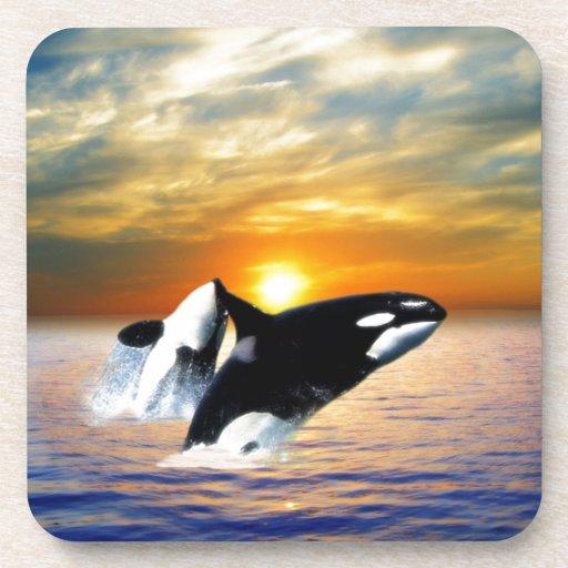 Ballenas en la puesta del sol posavasos