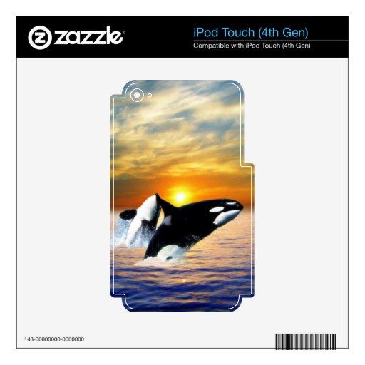 Ballenas en la puesta del sol skins para iPod touch 4G