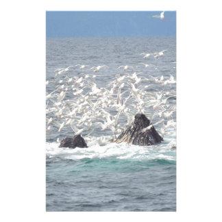 Ballenas jorobadas, gaviotas en Seward, Alaska Papeleria De Diseño