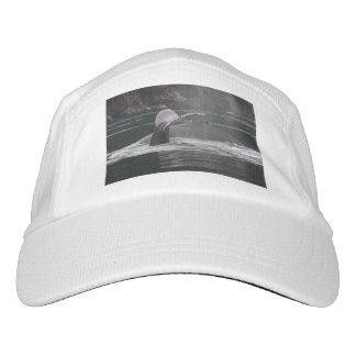 Ballenas jorobadas gorras de alto rendimiento