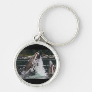 ballenas llavero redondo plateado