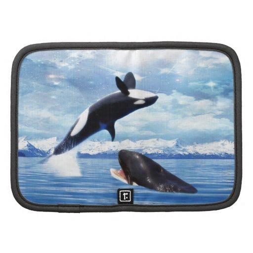 Ballenas soñadoras en la diversión y el juego organizador