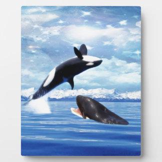 Ballenas soñadoras en la diversión y el juego placas para mostrar