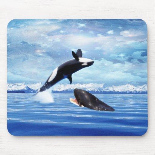 Ballenas soñadoras que gozan del océano mousepad