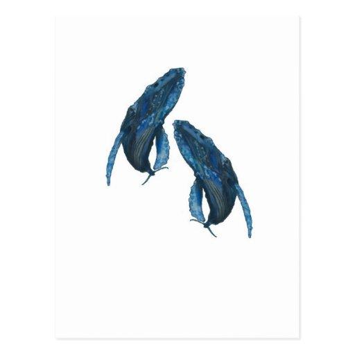 ballenas tarjetas postales