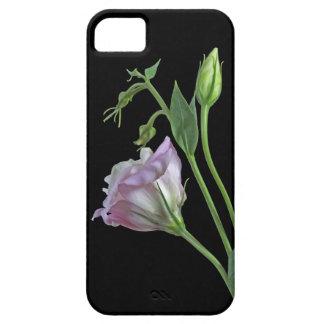 Ballerina iPhone 5 Case-Mate Case