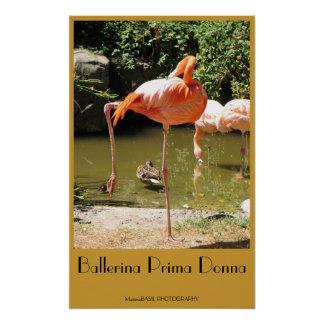 Ballerina Prima Donna Poster! Poster