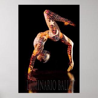 Ballet Dancer-4557XLG-Lum Print