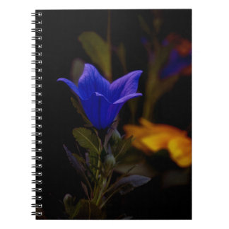 Ballon Flowers Notebook