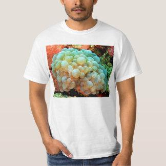 balloon coral T-Shirt