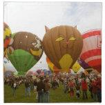 Balloon Fest Napkins