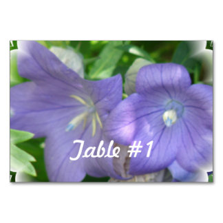 Balloon Flower Blossom Table Cards