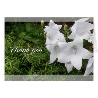 Balloon Flower (Chinese Bellflower) Thank You Card