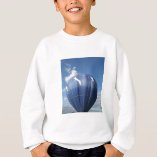 Balloon!  Seagulls flying Sweatshirt