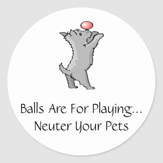 Balls Are For Playing Classic Round Sticker