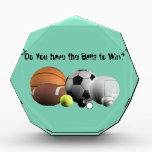 """Balls Sports  Do you have the Balls to Win? Acrylic Award<br><div class=""""desc"""">Balls and Sports; what a match! Do you have the balls to win? Fun and puns on sports for the sports lover.. More can be found at:http://www.zazzle.com/soaringstars. More of Sandy Daley&#39;s art can be found at:http://www.zazzle.com/sandydaley,  and http://www.zazzle.com/pomeranianpupparty</div>"""