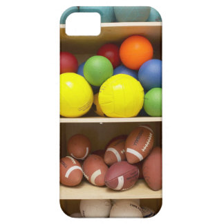 Balls stored in cabinet iPhone 5 cases