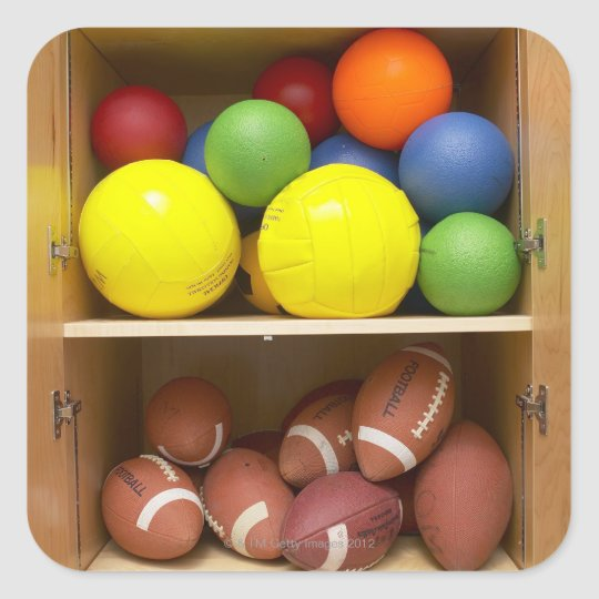 Balls stored in cabinet square sticker