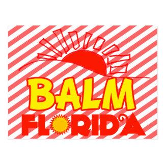 Balm, Florida Postcard