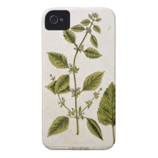 Balm, plate 27 from 'A Curious Herbal', published Case-Mate iPhone 4 Case