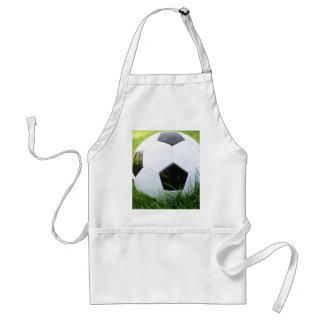 Balón de fútbol en la hierba del verano delantal