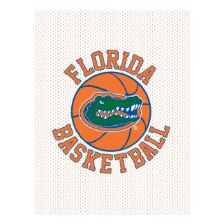 Baloncesto del cocodrilo de la Florida Postales