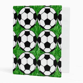 Balones de fútbol mini carpeta